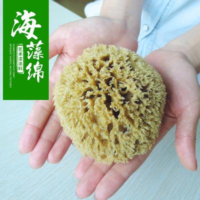 天然海绵蜂窝海藻绵